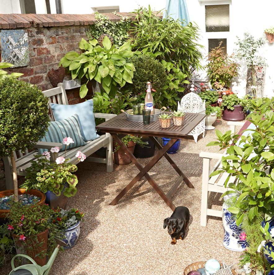 decorar patio interior con plantas