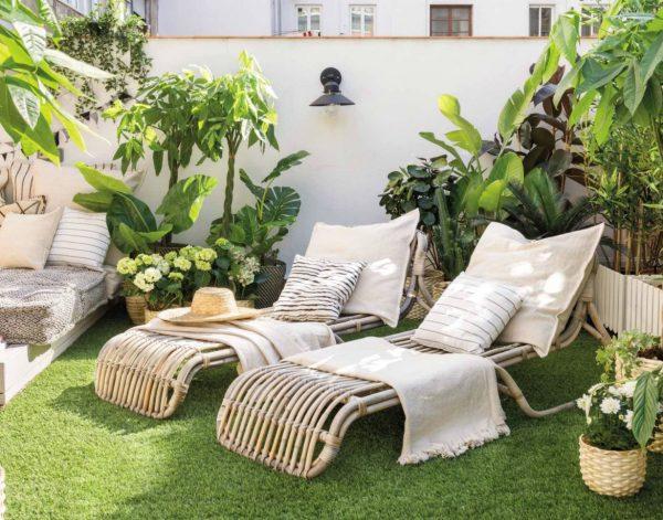 decorar patios con plantas