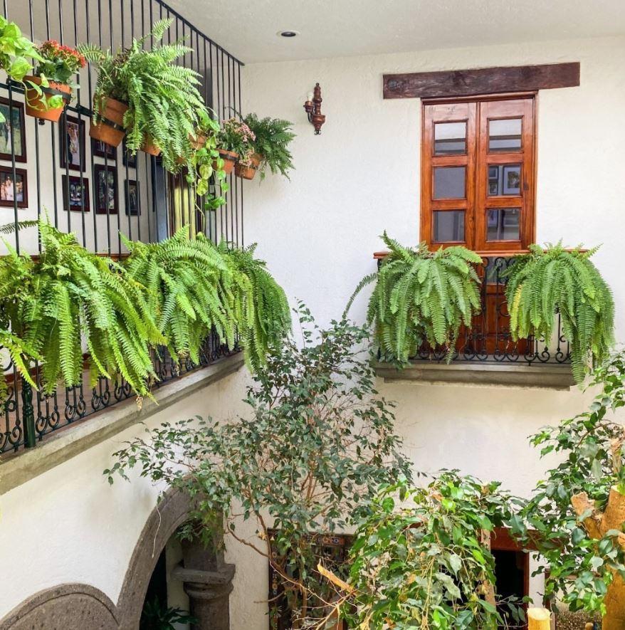 decorar patios interiores andaluces