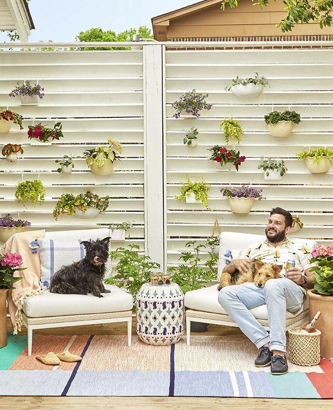 patio con plantas colgantes