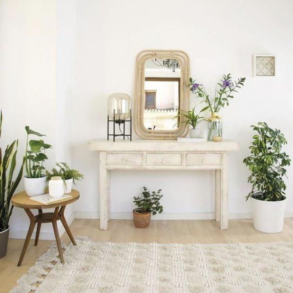 decorar recibidor con plantas