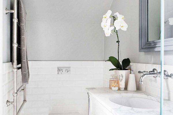 orquideas para el baño