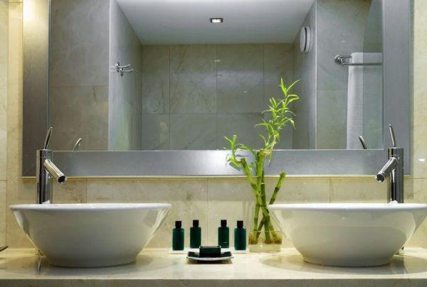 planta de bambu para baño