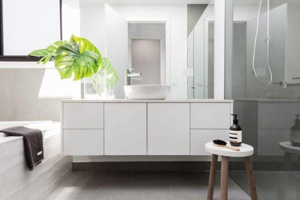 plantas para baños sin luz natural