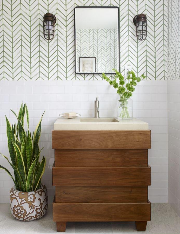 plantas para el baño que absorben humedad