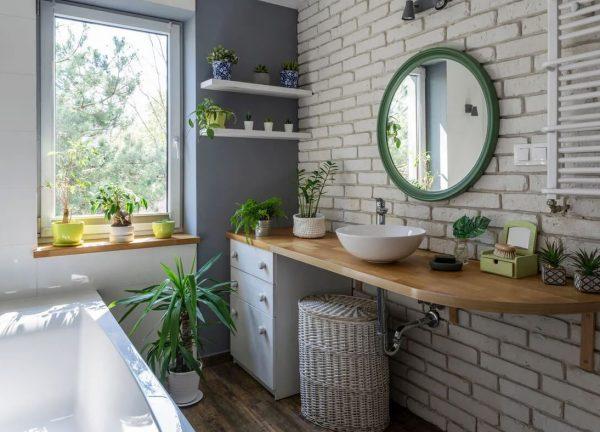 que plantas podemos poner en el baño