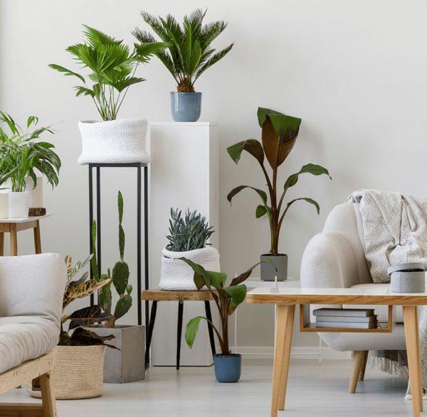 decorar salon con plantas artificiales