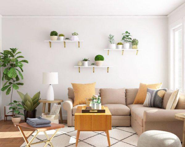 donde poner plantas en casa