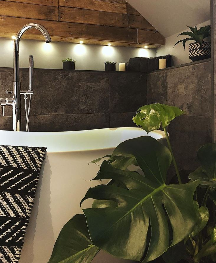 es bueno poner plantas en el baño