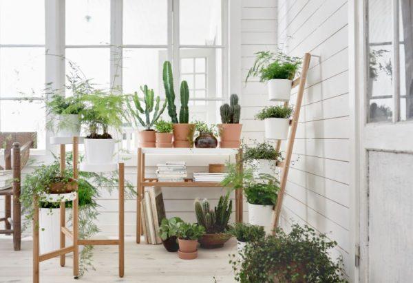 estanteria plantas escalera original
