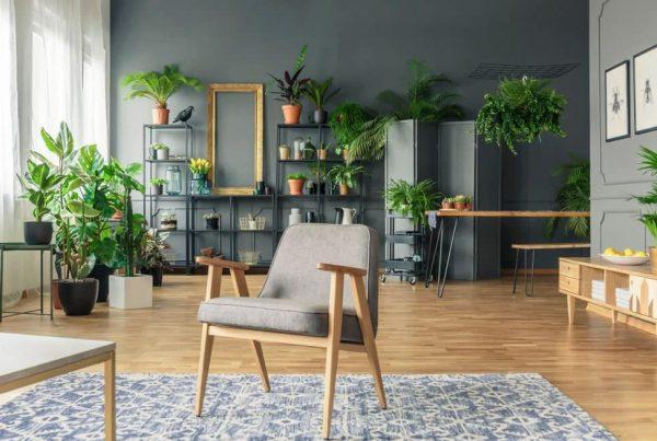 estantes para plantas interior