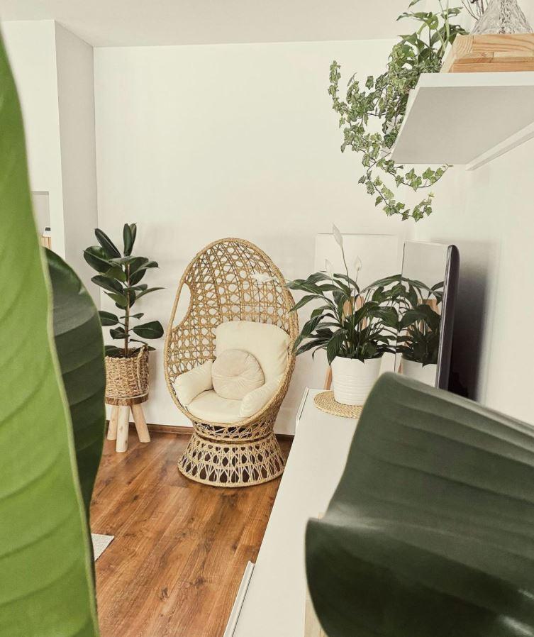 ideas para colocar plantas en espacios pequeños