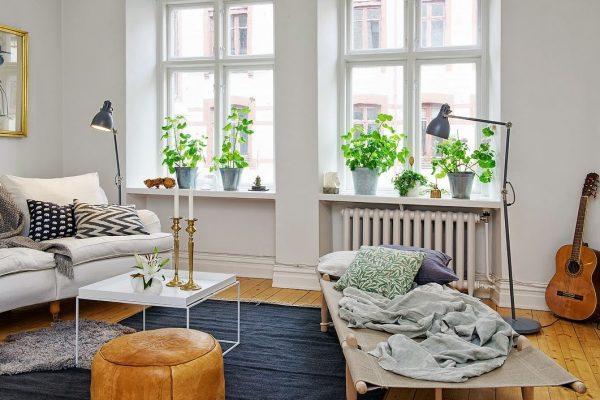 ideas para decorar ventanas con plantas