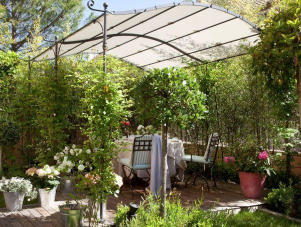 jardin cubierto plantas