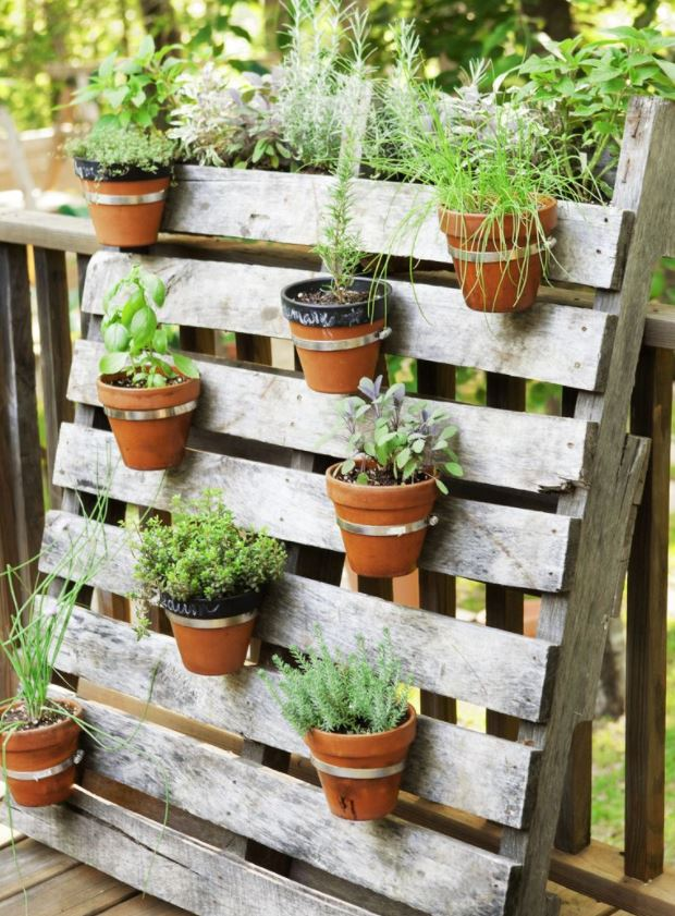 macetas originales para el jardin