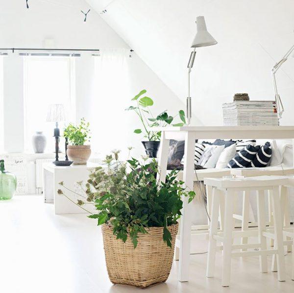 plantas artificiales para decorar salones