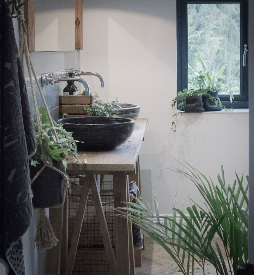 plantas para el baño con ventana