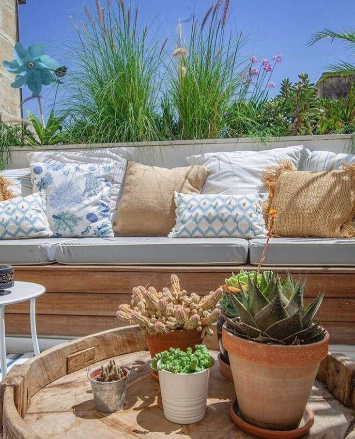 plantas para terrazas a pleno sol