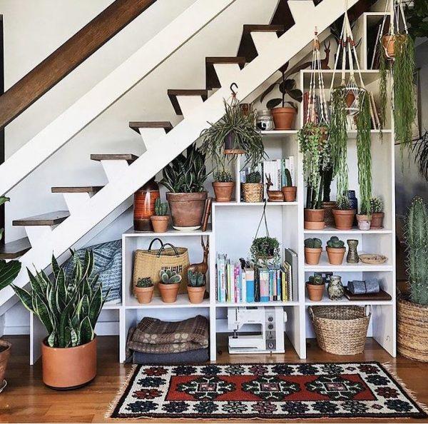 que plantas poner debajo de las escaleras