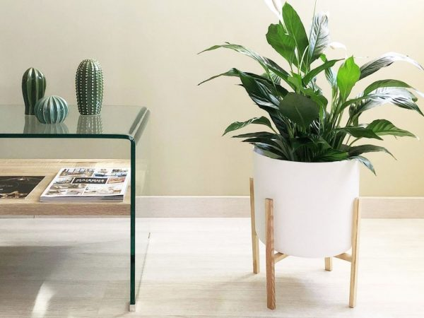 soporte para plantas de madera